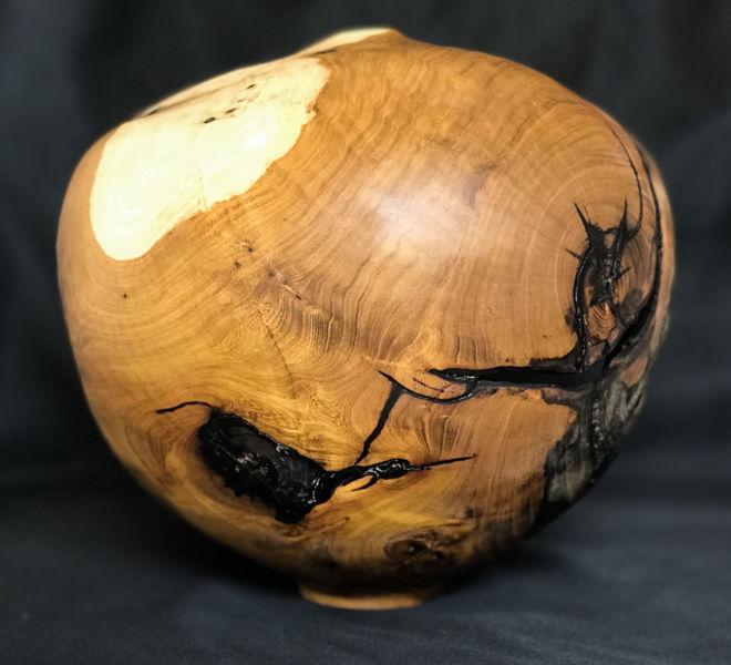 forme-creuse-arbre-judee-2