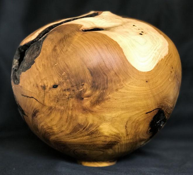 forme-creuse-arbre-judee-3